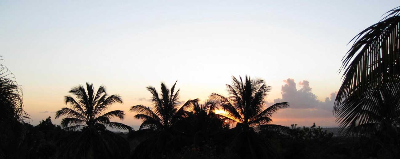 'sunset
