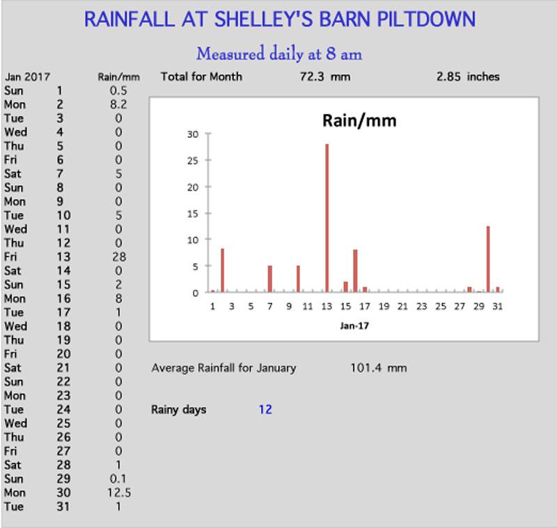 January rainchart